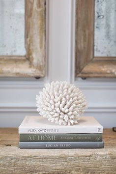 Coral and books are great decor pieces to add to your home
