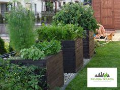 http://ZielonaTerapia.pl portfolio | Mały ogród przydomowy. Zastosowanie w projekcie nasadzeń z traw oraz roślin zimozielonych oznacza ogród prosty w obsłudze. To ogród ekologiczny, posiadający system nawadniania. | http://ZielonaTerapia.pl/portfolio/maly-ogrod-przydomowy-w-krakowie/