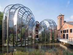 Bombay Sapphire Distillery Laverstoke, U. Thomas Heatherwick capped his adaptation of a historic paper mill in southern England into a production facility and visitor center for Bombay Sapphire gin with a grandiose gesture. Bombay Sapphire Gin, Hotel Breaks, Thomas Heatherwick, Gin Distillery, Paper Mill, Country Hotel, Bacardi, World's Most Beautiful, Architecture Design