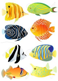 Illustration of Collection of colorful tropical fish vector art, clipart and stock vectors. Fish Vector, Vector Art, Tropical Fish Pictures, Underwater Painting, Watercolor Fish, Fish Drawings, Fish Design, Colorful Fish, Fish Art