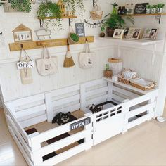 House Dog, Dog Houses, Dog Room Decor, Pet Bunny Rabbits, Bunnies, Bunny Cages, Rabbit Cages, Dog Bedroom, Whelping Box