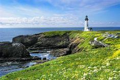 http://thumbs.imagekind.com/98736_650/Yaquina-Head-Lighthouse-in-Spring_art.jpg?v=1396266720