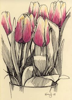 Billedresultat for drawings of tulips Pen And Watercolor, Watercolor Flowers, Watercolor Paintings, Drawing Sketches, Art Drawings, Nature Sketch, Doodle Inspiration, Flower Pattern Drawing, Urban Sketching