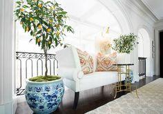 Traci Rhoads Interiors - entrances/foyers - blue and white planter, blue and white plant pot, indoor lemon tree, interior lemon tree, iron r...