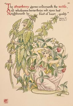 walter crane flowers - Google Search