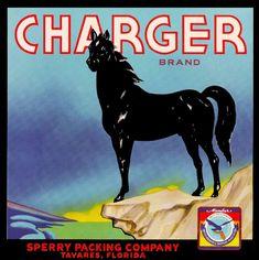 Tavares Florida Charger Brand Horse Orange Citrus Fruit Crate Label Art Print | eBay