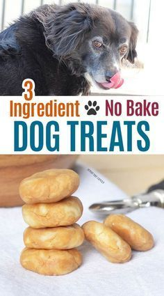 Super easy homemade dog treats your pup will love! These no bake dog treats are perfect to use as pill pockets too. They also make great training treats or are a great homemade gift for dog lovers! So easy kids can make them. Your dog will go nuts for these! #dogtreats #diydogtreats #homemade #easypetrecipes #dogs #dogmom #dogtraining