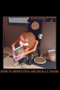 Pumpkin pies, how they are made