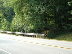 Grimes Sisters location that their bodies were found. It is said that the sound of a car door slamming and taking off at a high rate speed can be heard.  To get to this location that is not showing up on the map, once you leave the Healing Waters, make a left on to German Church Road and the location will be on your right side before you arrive to County Line Rd.