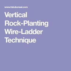 Vertical Rock-Planting Wire-Ladder Technique