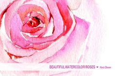 Watercolor roses col
