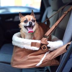 Stowe Booster Seat... perfect for those furry friends shorter in the legs!