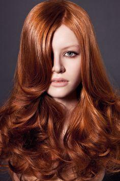 Ginger, Orange & Red