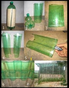 Greenhouse roof made from plastic bottles