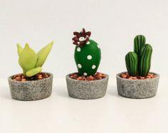 Cactus miniatura set 3 Cactus envío gratuito de la por TalorDesign