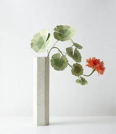 Not really flowers. Paper flower art. shop.thegreenvase.com  Buy it done or DIY with a kit. #paperart #flowers #botanicalart