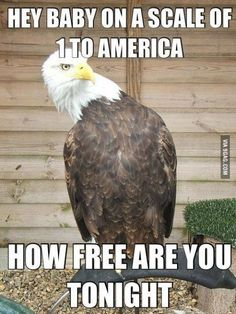 It's a place where this pickup line CAN work 100 percent of the time. | 21 'Murica Memes To Keep Your Patriotism Flowing