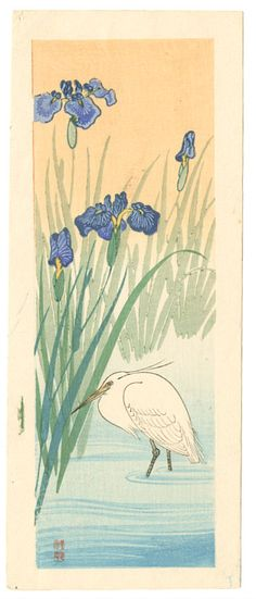 "koson mallard ✮✮""Feel free to share on Pinterest"" ♥ღ http://unocollectibles.com/all-posters"