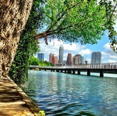 100 Reasons Why Austin's The Best | Things to Do in Austin, Texas...