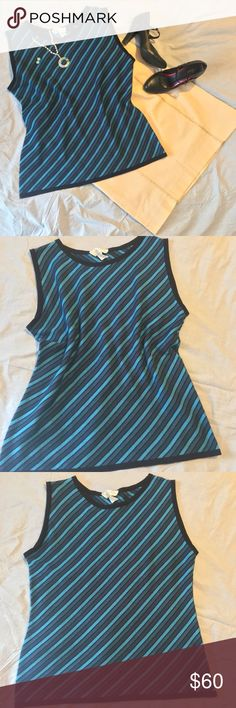 "Doncaster sleeveless sweater So soft and gorgeous Doncaster wool sweater! Black trim several shades of blue diagonal stripes.  Size L 100% extrafine merino wool Bust: 19"" Waist: 17"" Length: 24"" Doncaster Sweaters"