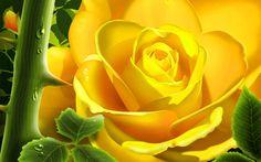 3D Desktop Wallpaper | Free Yellow 3D desktop wallpaper | Yellow 3D wallpapers