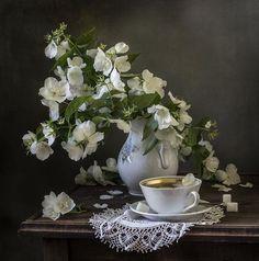 Аромат жасмина. Фотограф Оля