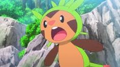 Image result for pokemon chespin