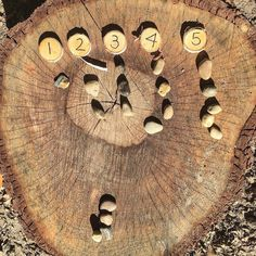 Nature and Numbers #reggioinspired #fairydustteaching #natureplay #looseparts