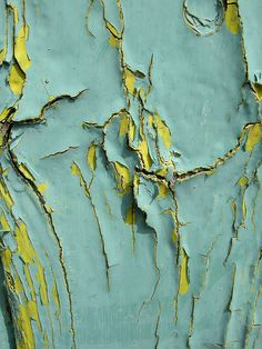 Layers of peeling paint. Love the colours.