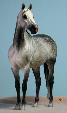 """Valor"" in dapple grey - always loved greys!"