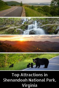 5 Attractions in Shenandoah National Park, Virginia