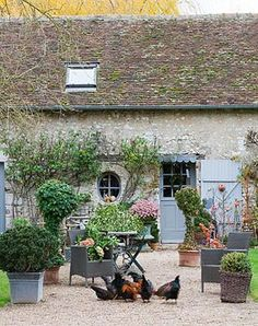 French farmhouse courtyard with chickens. Romantic French Country Garden Courtyard Ideas.