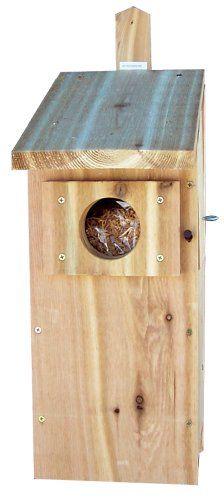 Stovall 6H Screech Owl Box