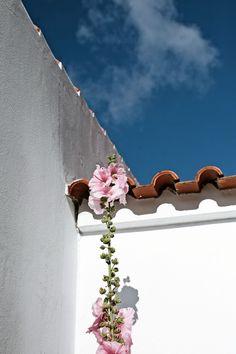 House in Odeceixe- Algarve - Pratos e Travessas | Mónica Pinto