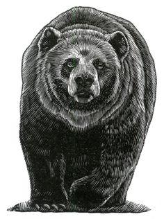 Nbear+small.JPG (676×906)