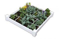 Square Foot Gardening, 4x4 Vinyl Box (shipped/no soil) | homegardenstogo.com | I want to win this on @SaveUp |https://saveup.com/r/c8D