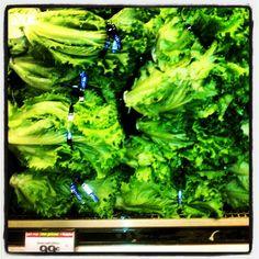 First you Juice it... Green Leaf Lettuce.  Photo by raydoustdar.