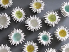 rythme régulier des fleurs