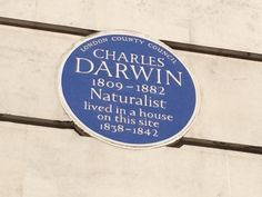 Charles Darwin - Gower Street, London, WC1 Charles Darwin, English Countryside, Cities, How To Find Out, England, Walls, Signs, Street, Reading