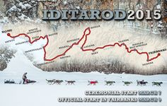 Iditarod Trail Sled Dog Race 2015 News | Alaska Dispatch News 7th Grade Writing, Yukon Quest, Kids Homework, Help Teaching, Sled Dogs, Alaska, Husky, Scenery, Racing