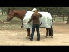 Quick Tip: How to Blanket Your Horse