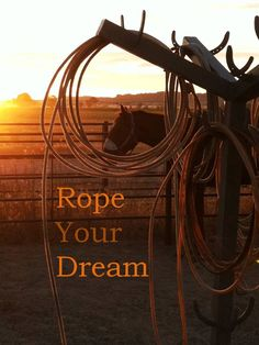 Your the only person alive who can see your big picture-Rope your dream. #ranchgrownlogic