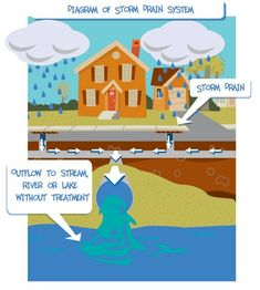 DES Stormwater Coalition | Monroe County, NY