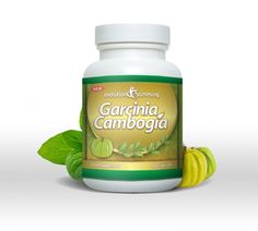 Doctor OZ Garcinia Cambogia for fat loss fruit extract can be a supplement links from a little, pumpkin-like fruit called Garcinia Cambogia. The supplement truly comes in the crust of the fruit. The fruit has existed for many years. ...