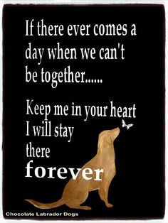 I literally teared up just reading this :( My heart is with all my Goldens who…