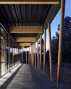 loewer + partner architekten sports hall at schuldorf germany designboom