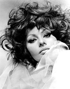Sophia Loren  by Richard Avedon  1966