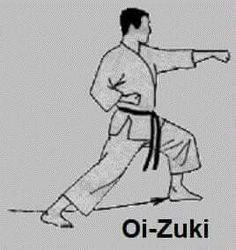 SHOTOKAN Karate Training, Combat Training, Jiu Jitsu, Shotokan Karate Kata, Muay Thai Martial Arts, Kyokushin Karate, Art Poses, Dojo, Goju Ryu