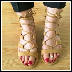 $25✂️LAST CALL ✨HP✨GLADIATOR LACE-UP SANDAL Various With Tags $70 Retail + Tax   *Lace fastening running up ankle *Back zip entry *Sexy gold-tone heel *Soft suede like man-made fabric *Rubber outsole *Runs true to size   2+ BUNDLE=SAVE  ‼️NO TRADES--NO HOLDS--NO MODELING   Brand Items Authentic   ✈️ Ship Same Day--Purchase By 2PM PST    USE BLUE OFFER BUTTON TO NEGOTIATE  ✔️ Ask Questions Not Answered In Description--Want You To Be Happy Carlos Santana Shoes Sandals