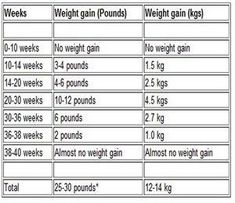 Result of the image for months and weeks of pregnancy Weight gain expected - Nursing Student - Pregnancy Nutrition, Pregnancy Health, Pregnancy Workout, Pregnancy Cravings, Pregnancy Months, Pregnancy Tips, Pregnancy Facts, Pregnancy Trimester Chart, Bebe